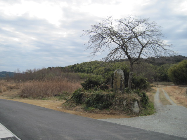yamazoe01