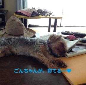 あー、テーブルに寝てる!