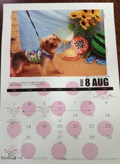 ゴンのカレンダーもらっちゃった^^