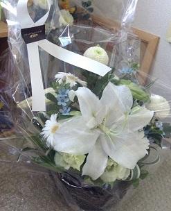 きれいなお花をいただきました^^