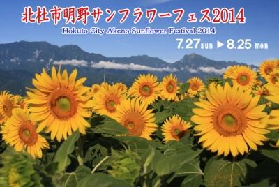 20140817himawari.jpg