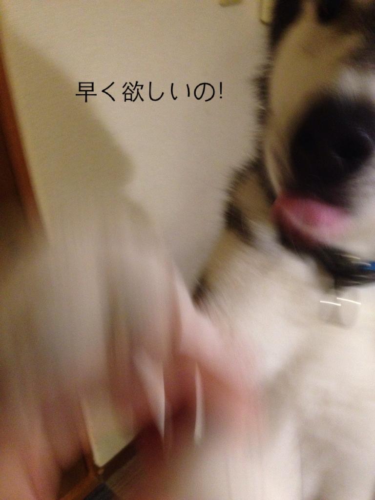 fc2blog_201407301802234c8.jpg