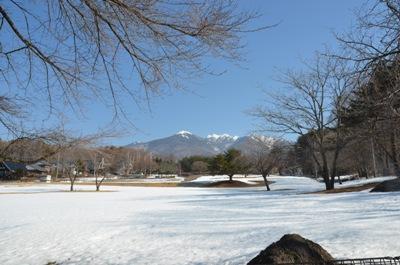 八ヶ岳春1