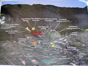 アルザス クライデンヴァイス 畑地図
