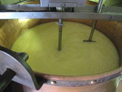 アルザス チーズ農家4
