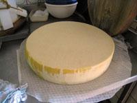 アルザス チーズ農家 若いハードチーズ