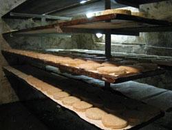 アルザス チーズ農家 熟成庫1