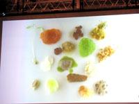 090210Tokyo Taste Ferran Adria 2