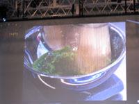 090210Tokyo Taste Ferran Adria 4