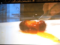 090210Tokyo Taste Ferran Adria 10
