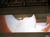 090210Tokyo Taste Ferran Adria 12