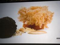 090210Tokyo Taste Ferran Adria 13