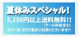 Blog用 summer holiday special