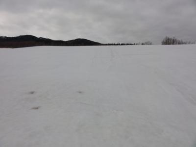 藻琴山・阿寒 009