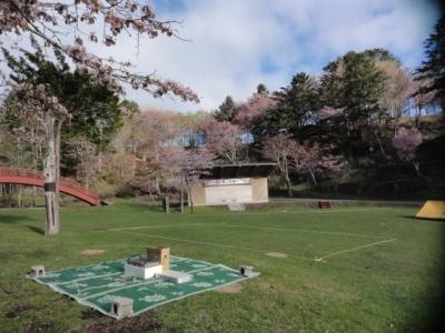 桜・牡蠣祭り 003