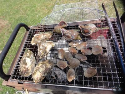 桜・牡蠣祭り 035