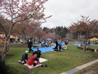桜・牡蠣祭り 030
