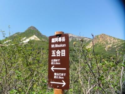 ランニング・雌阿寒岳 045
