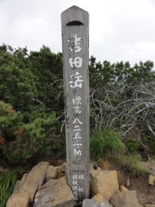 伏美岳・アポイ岳 213