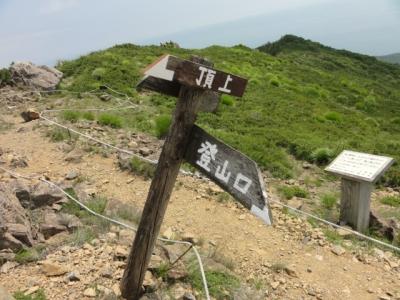 伏美岳・アポイ岳 242