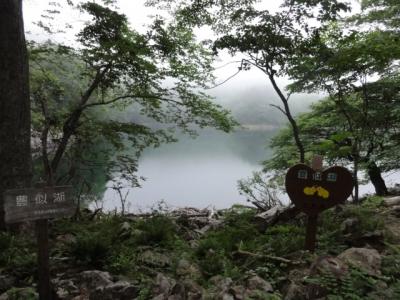 伏美岳・アポイ岳 270