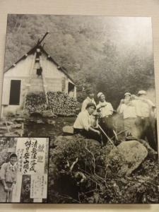 斜里岳7.22 003