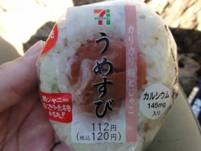 斜里岳7.22 041