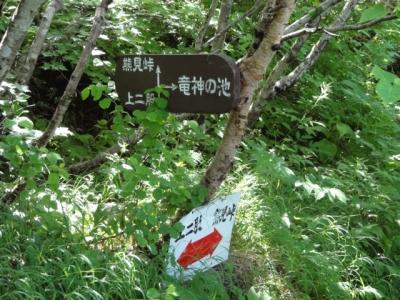 斜里岳7.22 046