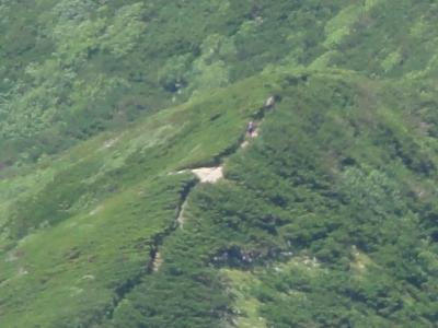斜里岳7.22 095