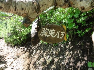 斜里岳7.22 099
