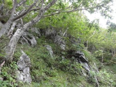 羅臼岳 059