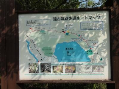 達古武キャンプ 050