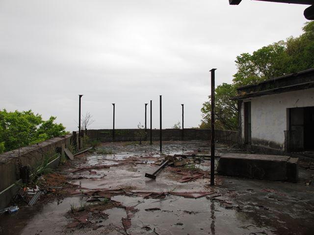 maya70_R.jpg