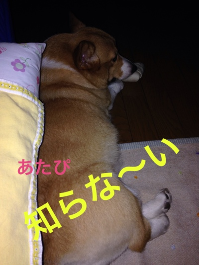 fc2blog_20140913002533133.jpg