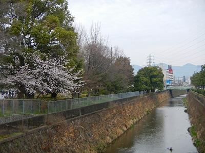 DSCN5690.jpg
