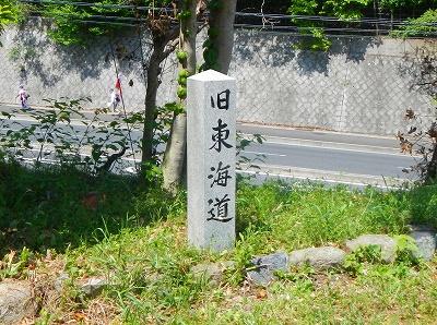 DSCN7146.jpg