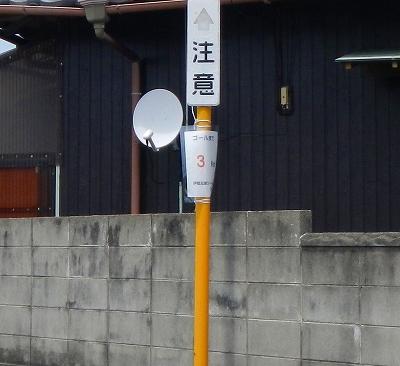 DSCN7829.jpg