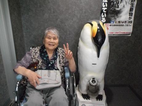 ペンギンと(大)