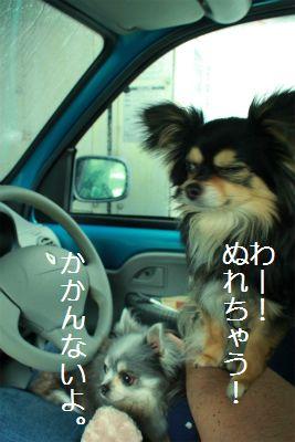 IMG_6204.jpg