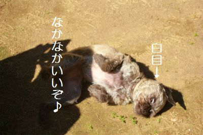 IMG_6330.jpg