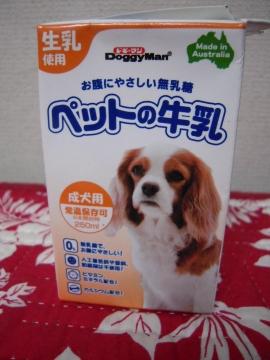 DSCN9988 ミルク