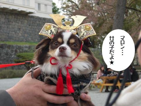 DSCN0056  小田原城