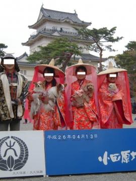 DSCN0035 小田原城