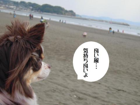 DSCN0005  江の島