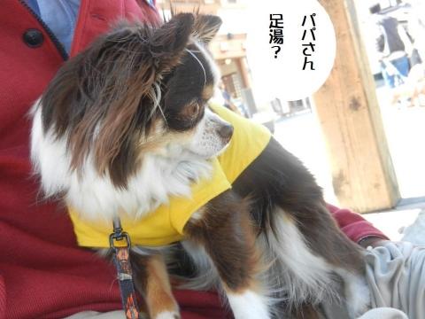 DSCN0017 草津