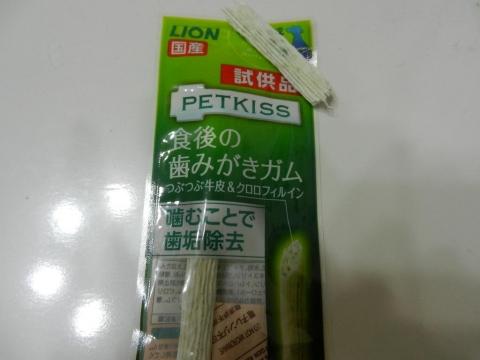 DSCN9700 ガム