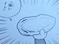 強いイシ (233x175)