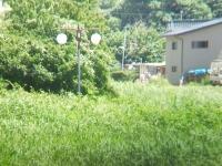 長野の風景②
