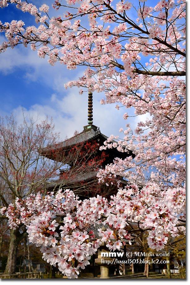 kyoto_s08.jpg