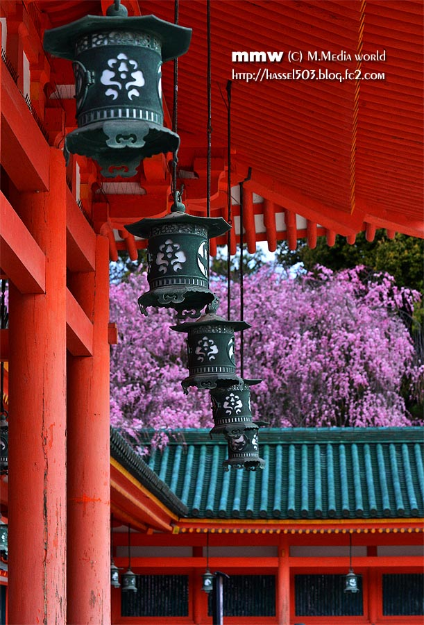 kyoto_s10.jpg
